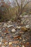 Autumn Creek Photo libre de droits