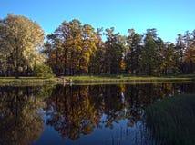 Autumn Creek Fotografia Stock Libera da Diritti