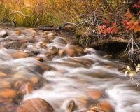 Autumn creek. Flowing creek water (slow shutter speed stock photos