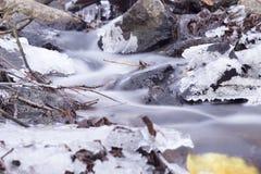 Autumn Creek Stockfotografie