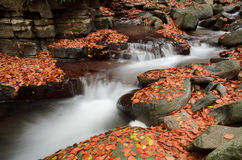 Autumn creek Stock Photo