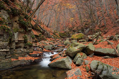 Autumn creek Stock Photos
