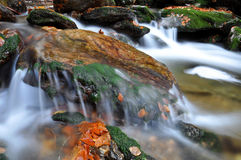 Autumn creek in bohemia Stock Image