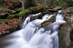 Autumn creek in bohemia Royalty Free Stock Photos