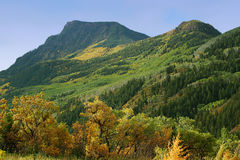 autumn creek buldoga wzdłuż torów Obraz Stock