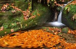 Autumn creek Royalty Free Stock Photos