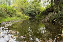 Autumn an creek. Creek with autumn leaves and reflection Royalty Free Stock Images