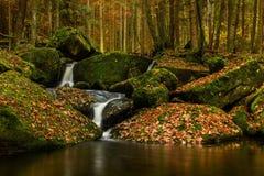 Autumn creek. In Czech Republic stock image