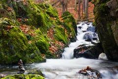 Autumn creek. In Czech Republic royalty free stock image