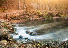 Autumn creek. Flowing stream on autumn forest Stock Photography