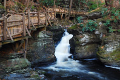 Autumn creek with hiking trails and foliage Royalty Free Stock Photo