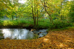 Autumn creek Royalty Free Stock Images