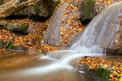 Autumn creek with a little cascade. Stock Images
