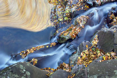 Autumn creek with a little cascade. Stock Photography