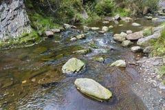 Autumn Creek Rapids, België stock afbeeldingen