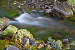 Autumn Creek Rapids Long Exposure, Belgium Royalty Free Stock Photos