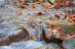 Autumn creek with rocks and foliage Stock Photo