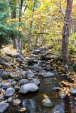 Autumn by the creek. Serene creek with large rocks and a golden glow from the leaves changing color in autumn royalty free stock photography