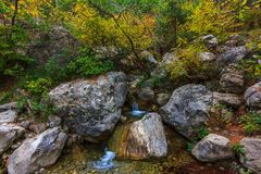Autumn Crimea stockbilder