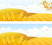 Autumn crop banners. Autumn backgrounds with crop fields and falling leaves stock illustration