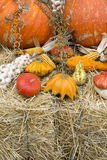 Autumn crops. Colorful display of autumn crops on hay Royalty Free Stock Photo