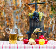 Autumn crops and wine Stock Photography