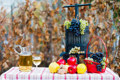 Autumn crops and wine Royalty Free Stock Photo