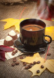 Autumn cup of coffee. And small chocolate   cookies Royalty Free Stock Images