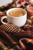 Autumn cup of coffee, scarf, candle. Autumn cup of coffee, warm plaid scarf, brown candle, pine royalty free stock images