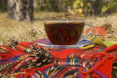 Autumn cup of tea Royalty Free Stock Image