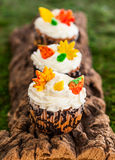 Autumn cupcake Royalty Free Stock Images