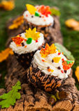 Autumn cupcake Stock Photography