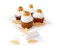 Autumn Cupcakes Fotografia de Stock Royalty Free