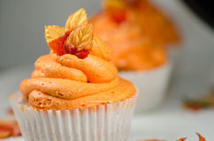 Autumn Cupcakes. Cupcake with autumn leaves and colours Stock Images