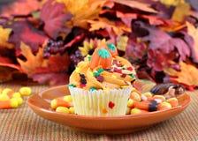 Autumn Cupcakes Stock Photo
