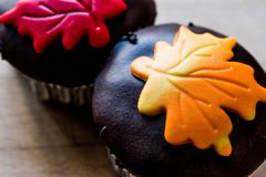 Autumn Cupcakes with leaf style Royalty Free Stock Photo