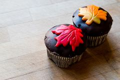 Autumn Cupcakes with leaf style Stock Images