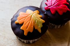 Autumn Cupcakes with leaf style Stock Photos
