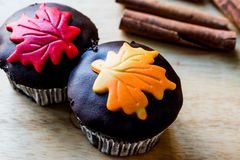 Autumn Cupcakes with leaf style Stock Photography