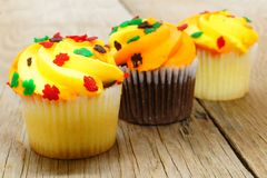Autumn cupcakes Stock Photos