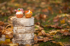 Autumn cupcakes. On the stumps Royalty Free Stock Photo