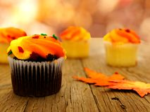 Autumn cupcakes Stock Photo