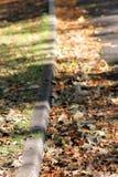 Autumn curbside Stock Photo