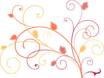 Autumn curls Royalty Free Stock Images