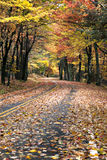 Autumn curved road Royalty Free Stock Photography