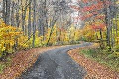 Autumn Curves Lizenzfreie Stockfotos