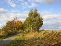 Autumn cycle path Royalty Free Stock Photos