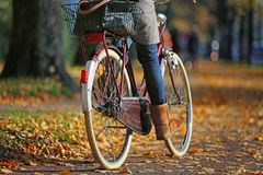 Autumn_cycling Royalty-vrije Stock Fotografie