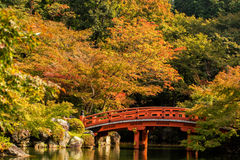 Autumn at daigoji temple with colorful Stock Image