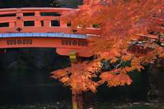 Autumn at Daigoji Temple in Kyoto Royalty Free Stock Images